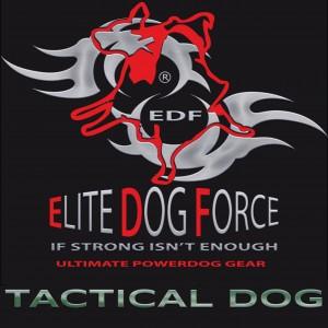 3-1-4.ELITE DOG FORCE - TACTICAL DOG